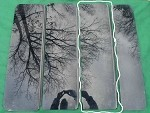 2005 - 2010 PONTIAC G6 2nd PANORAMIC SUNROOF GLASS PANEL 22714594