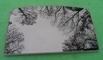 2017 FORD ESCAPE FRONT SUNROOF GLASS CJ5Z-78500A18-A; CJ5Z78500A18A